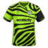 Forest Green Rovers 2019-20 home