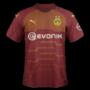 Borussia Dortmund 2019-20 third
