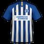 Brighton & Hove Albion 2019-20 home