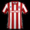 Stoke City 2019-20 home