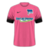 Hertha 2016–17 third