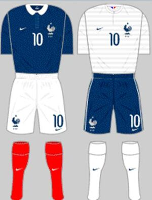 France kit (FIFA World Cup 2014)