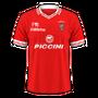 Perugia Calcio 2016-17 home