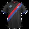 Crystal Palace 2013–14 away