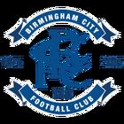 Birmingham city logo 2015