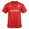 Cardiff City 2013–14 home