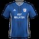 Cardiff City 2019-20 home