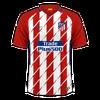 Atlético Madrid 2017-18 home