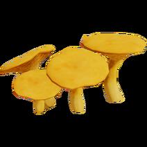 Jack Mushroom01