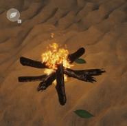 Basic fire