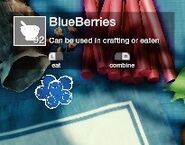 Blueberry Inventory
