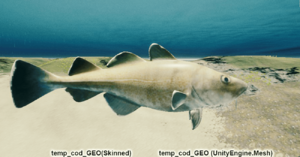 Fish Temp Cod Geo