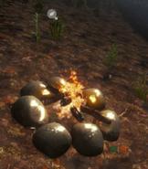 Fire Pit-0