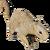 IconSquirrel