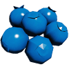 IconBlueberry