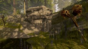 Cave-enterance-the-forest-1-0-dirty (66)