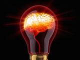 Articles on the Genius of Autism