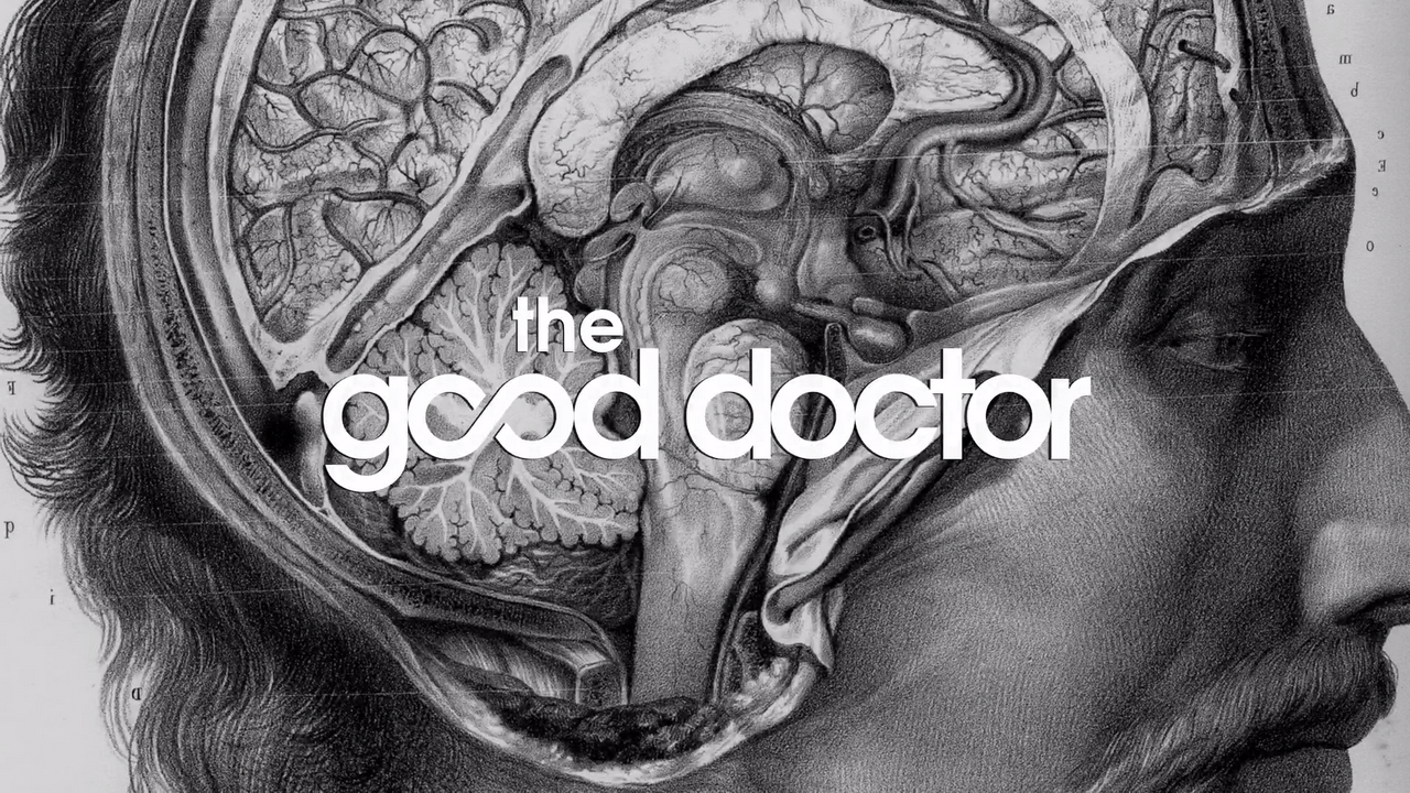 Image result for the good doctor opening title