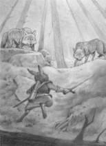 Helmer fights wolves on the way to Harbone ER