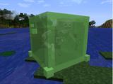 Gelatinous Slime