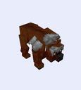 Unused Bear