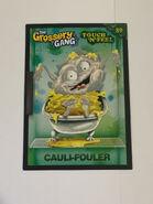 Cauli fouler touch n feel card