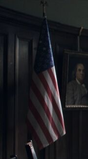 USA remnant flag TV series