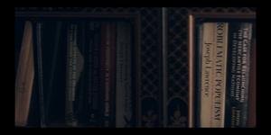 Bookshelf Lawrence II