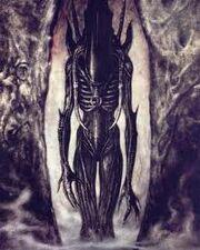 Alien palatine