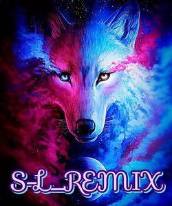 S-L REMIX