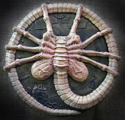 Alien face hugger sculpture by mixta110-d5j6uas