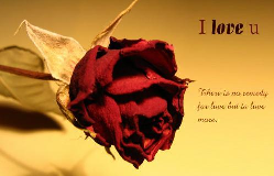 File:Romance.png