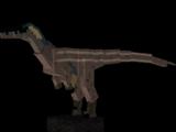 Austroraptor