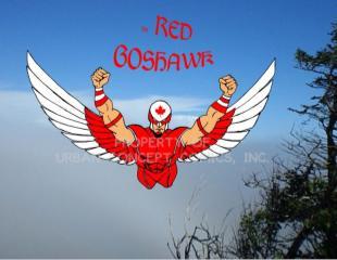 File:Red Goshawk.jpg