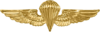Naval Parachutist insignia