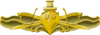 Surface Warfare Officer Insignia