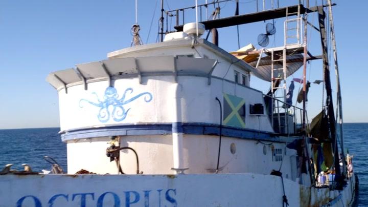 Octopus | The Last Ship Wiki | FANDOM powered by Wikia