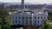 Red Flu White House