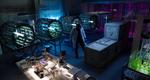 Paul Vellek's lab