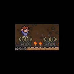 Maxx dancing on a demon altar.