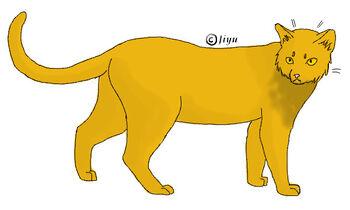 Löwenpranke