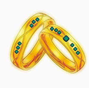 Seulroeo's Wedding Rings