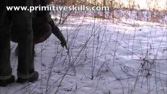 Tracking & trailing Skills
