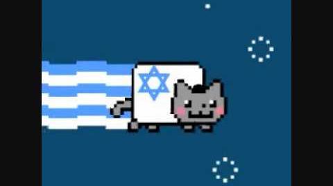 NYAN CAT - ISRAEL