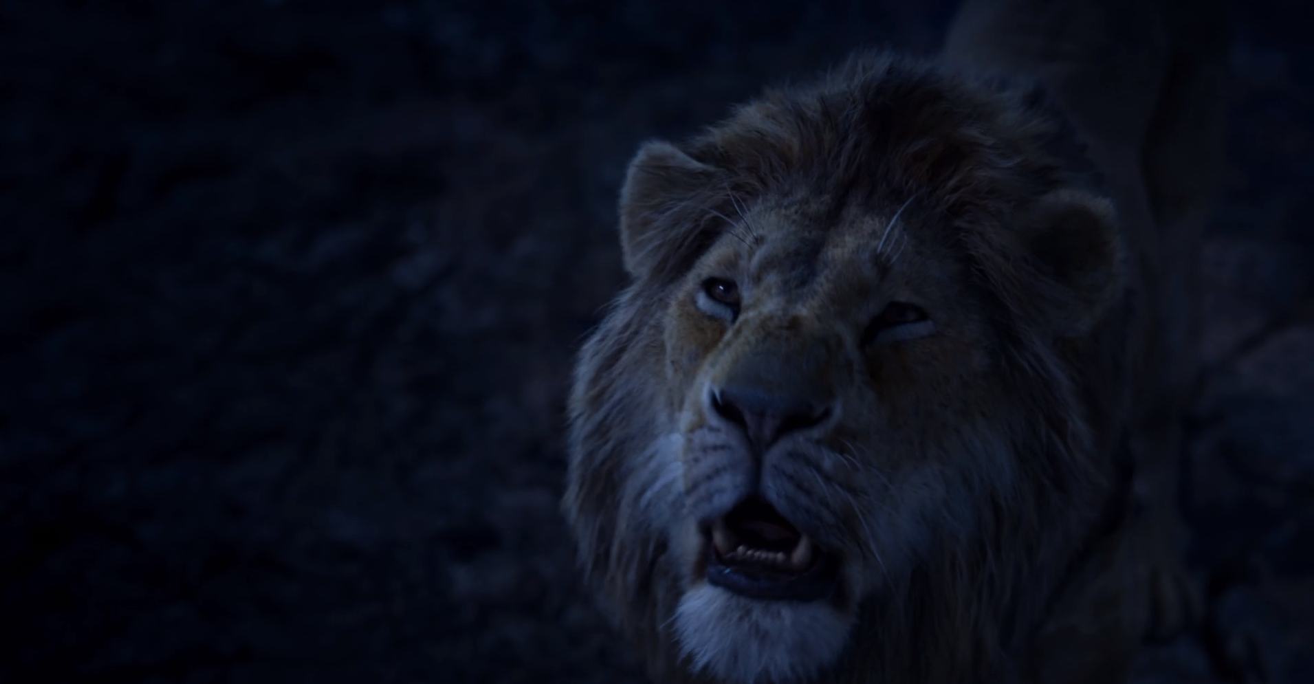 Simba The Lion King 2019 Film Wiki Fandom