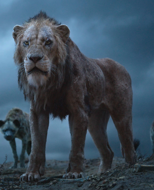 Scar The Lion King 2019 Film Wiki Fandom