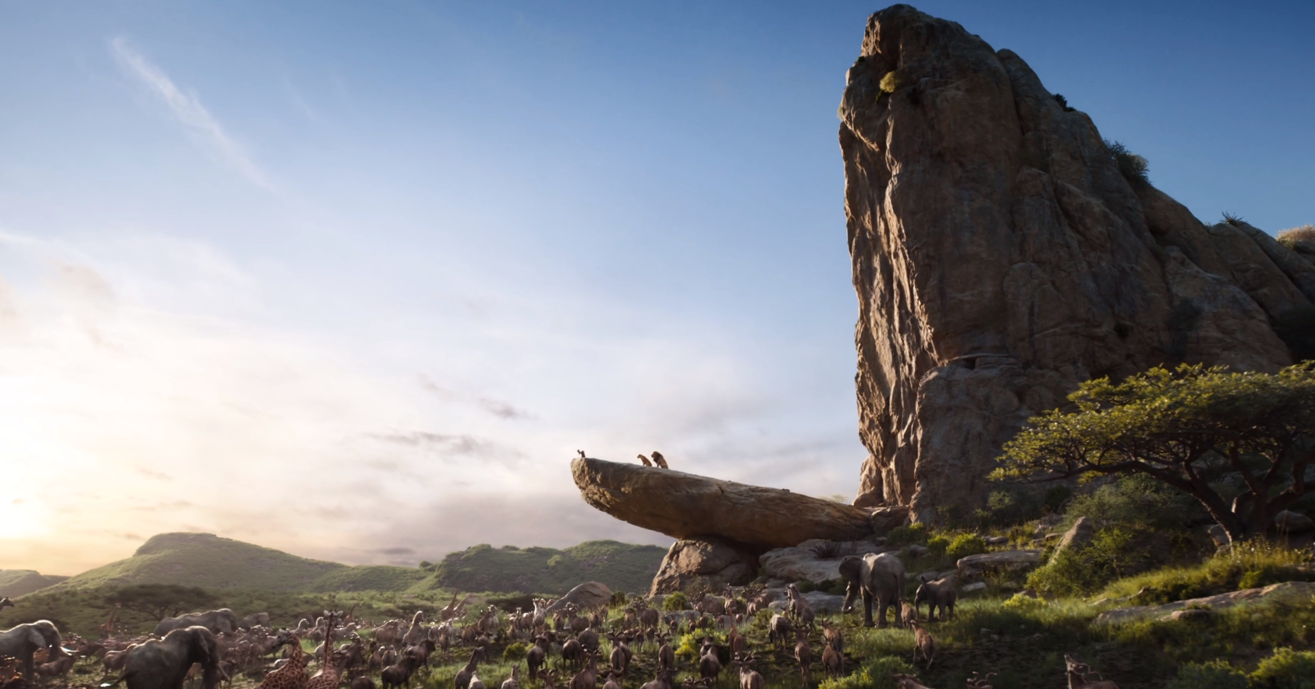 Pride Rock The Lion King 2019 Film Wiki Fandom Powered