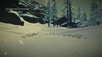 Тихая поляна