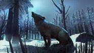 Волк арт