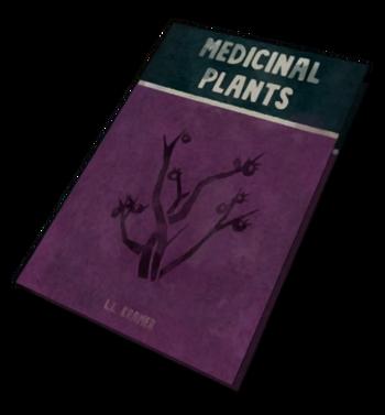 Целебные растения Дикого медведя